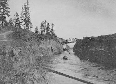 Looking east toward logs in the Montlake Ditch, 1902. A current created by the approximately nine-foot drop between Lake Washington and Lake Union carried logs to Lake Union. Boats then towed the logs to sawmills on the lakeshore. Courtesy of the University of Washington Special Collections, UW 22087