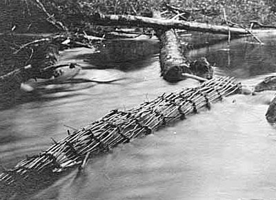 Basket fishing traps, probably in Auburn, ca. 1923